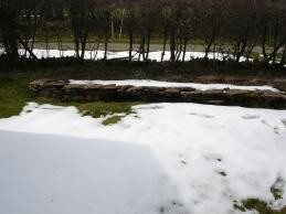 Mein Winter Garten