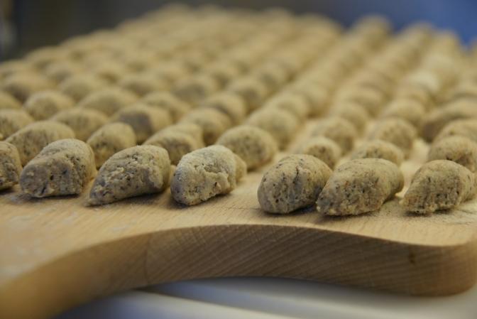 Ricotta-Buchweizen-Gnocchi. Gnocchetti di grano saraceno e ricotta con ragu'