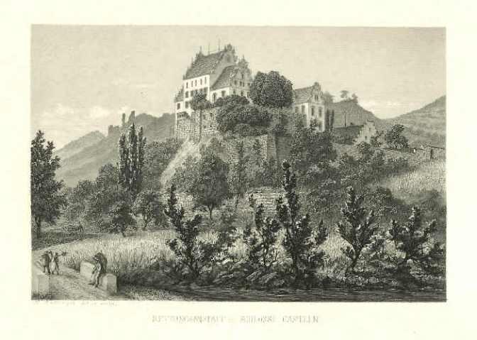 CH-5108 Oberflachs: Schloss Kasteln und seine Therapieziegen