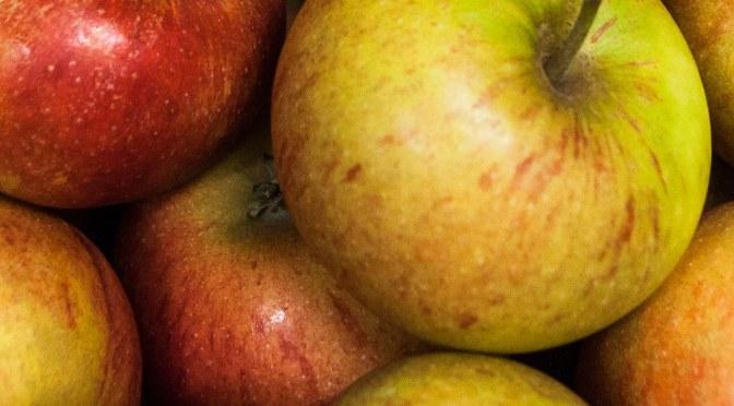 Der Apfel und die Mutterhefe